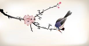 鸟绘画 免版税库存照片