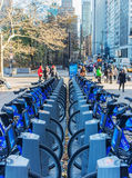 骑自行车在纽约天街道上的聘用  免版税库存照片