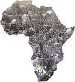 非洲野生生物背景 免版税库存图片