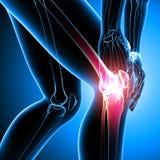 人的膝盖痛苦 库存图片