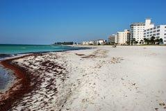 佛罗里达威尼斯 免版税库存照片
