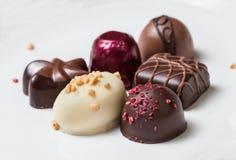 Γαστρονομικές σοκολάτες Στοκ εικόνες με δικαίωμα ελεύθερης χρήσης
