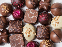 Γαστρονομικές σοκολάτες Στοκ Εικόνα