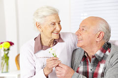 给花的老年人 库存图片