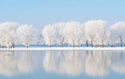 与反射的冬天风景在水中 免版税库存图片