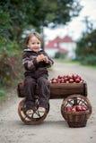 小男孩,有台车的有很多苹果 免版税图库摄影