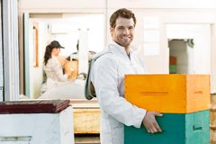 男性蜂农运载的堆蜂窝条板箱 免版税库存照片