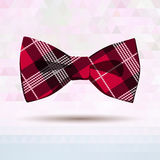 红色格子呢弓领带 库存照片