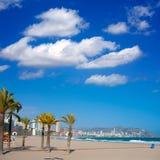 贝尼多姆阿利坎特海滩棕榈树和地中海 免版税库存照片