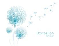 Эскиз одуванчика цветка Стоковое Изображение RF