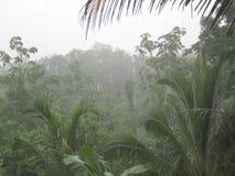 雨 图库摄影