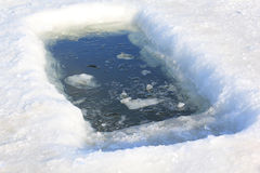 Τρύπα πάγου για το χειμερινό λούσιμο Στοκ Εικόνα
