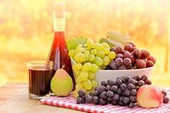 红葡萄酒和葡萄 库存照片