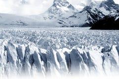 佩里托莫雷诺冰川 免版税库存图片