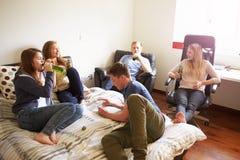 喝酒精的小组少年在卧室 免版税库存照片