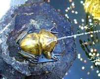 古铜色青蛙喷泉 库存照片