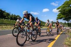 自行车道冠军 免版税图库摄影