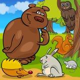 森林野生动物动画片小组 免版税库存照片