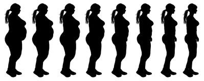 减肥妇女减重变革剪影的油脂 免版税库存照片