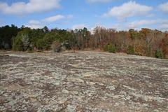 Λειχήνες που καλύπτουν μια επάνθιση βράχου γρανίτη Στοκ εικόνες με δικαίωμα ελεύθερης χρήσης