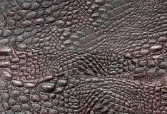 鳄鱼皮革 库存图片