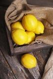 新鲜的未加工的柠檬 免版税库存照片