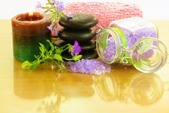 淡紫色温泉疗法产品 免版税库存照片