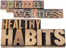 优选的健康和健康习性 库存图片
