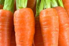 морковь Стоковые Изображения RF