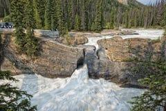 鲜绿色湖自然桥梁 免版税库存图片