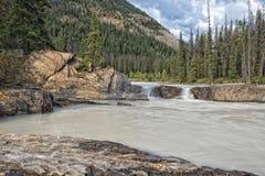 鲜绿色湖自然桥梁 库存照片