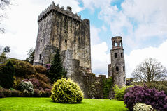 Ирландский замок лести, известный для камня красноречивости. Ярость Стоковая Фотография RF