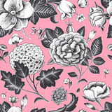 Красивая винтажная флористическая безшовная картина. Стоковое Изображение RF