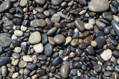 湿岩石 库存图片