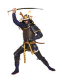 装甲的武士 免版税库存照片