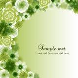 绿色传染媒介花卉背景 免版税库存照片