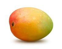 与水下落的芒果 库存图片
