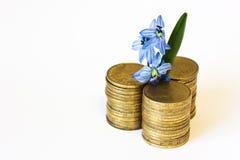 金钱成长,银行 免版税库存照片