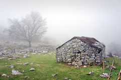 在与雾的山流洒的石头 库存照片