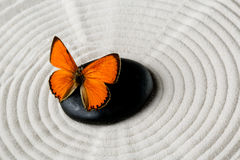 与蝴蝶的禅宗石头 免版税库存图片