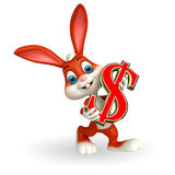 与美元的符号的逗人喜爱的复活节兔子 免版税库存图片