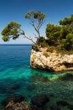 Великолепный берег моря Хорватии Стоковое фото RF