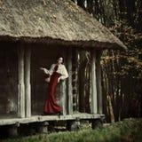 小红骑兜帽。童话 免版税图库摄影