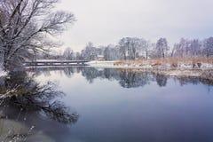 在沼泽的看法。草和水。 免版税图库摄影