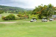 高尔夫球场和推车 库存图片