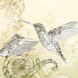 与哼唱着鸟和漩涡的花卉传染媒介背景 图库摄影