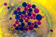 Покрасьте красный зеленый желтый конспект Стоковые Фото