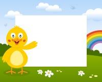复活节逗人喜爱的小鸡照片框架 库存照片