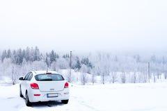 白色汽车冬天 库存照片