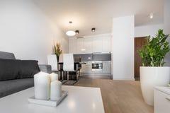 Современный роскошный дизайн интерьера живущей комнаты Стоковое Изображение